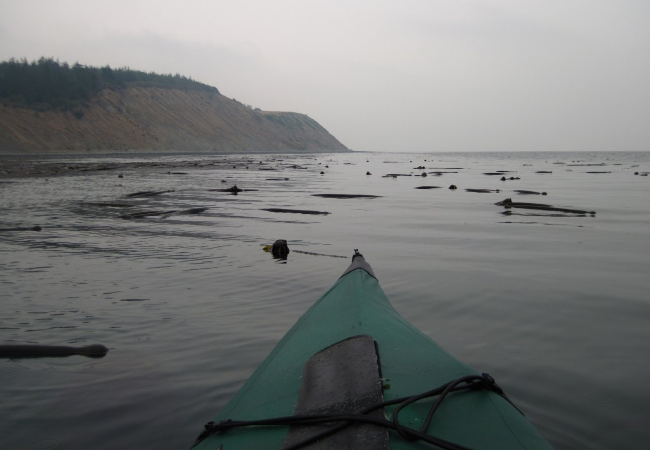 14 paddling south along Whidbey shore.JPG
