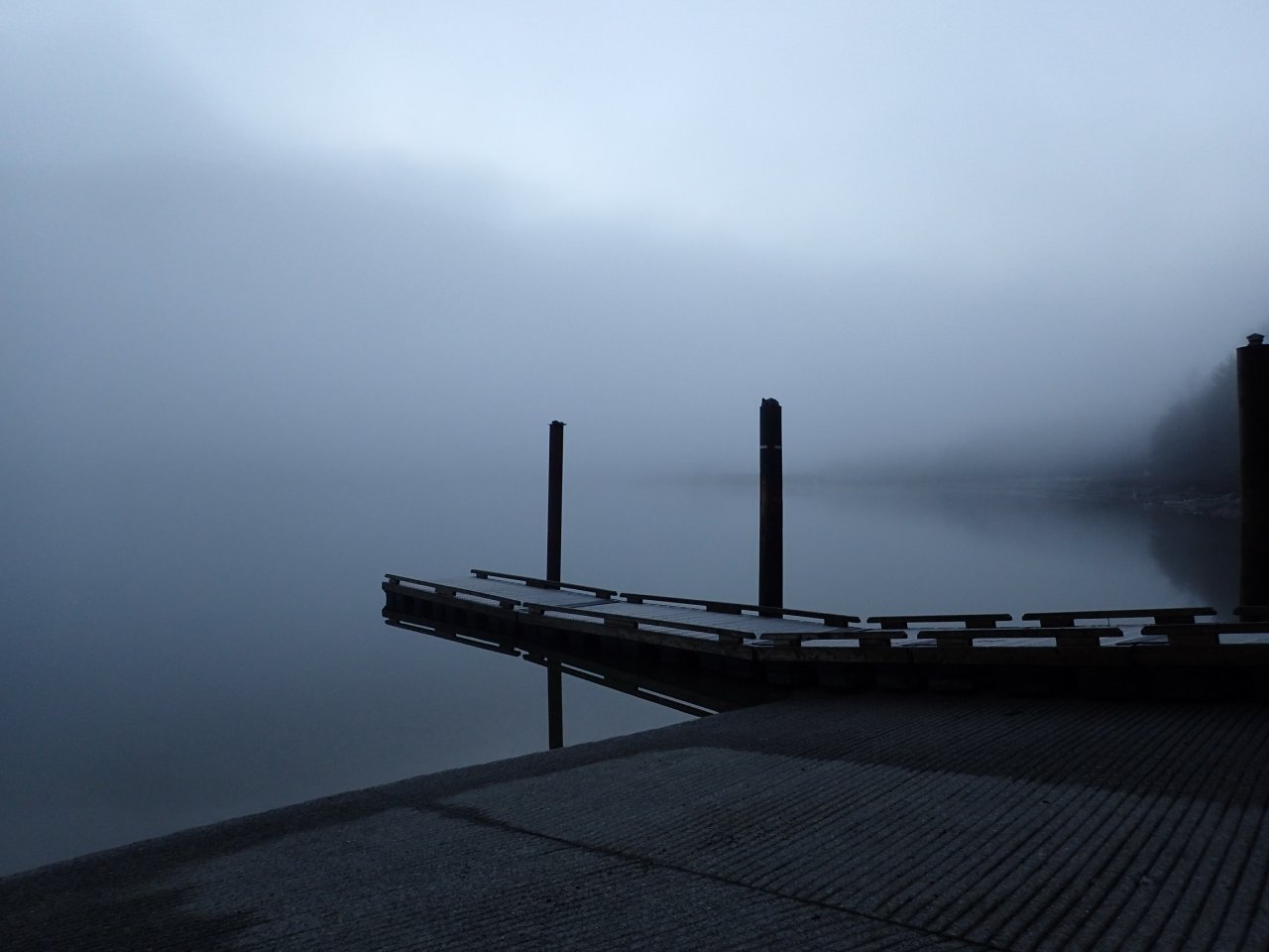 Foggy Dock.jpg