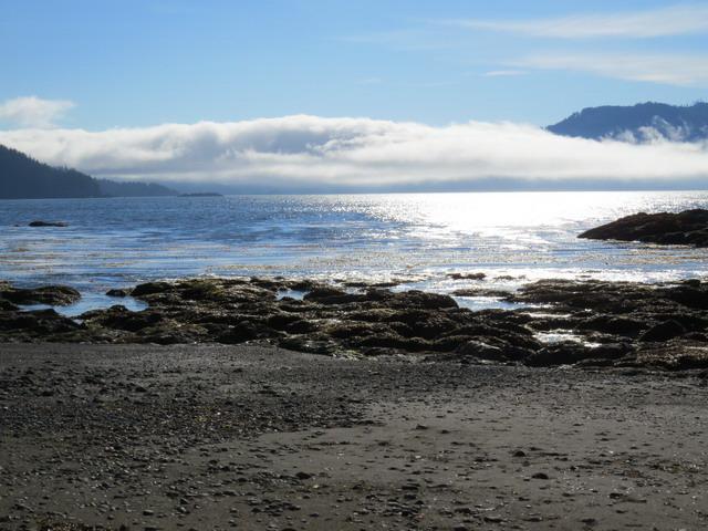 Kains Beach.jpg