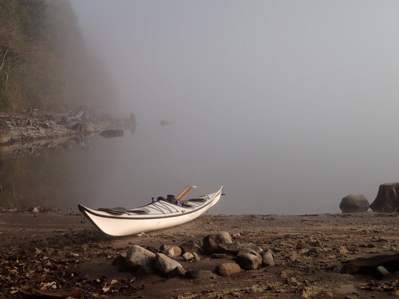 Still foggy.jpg