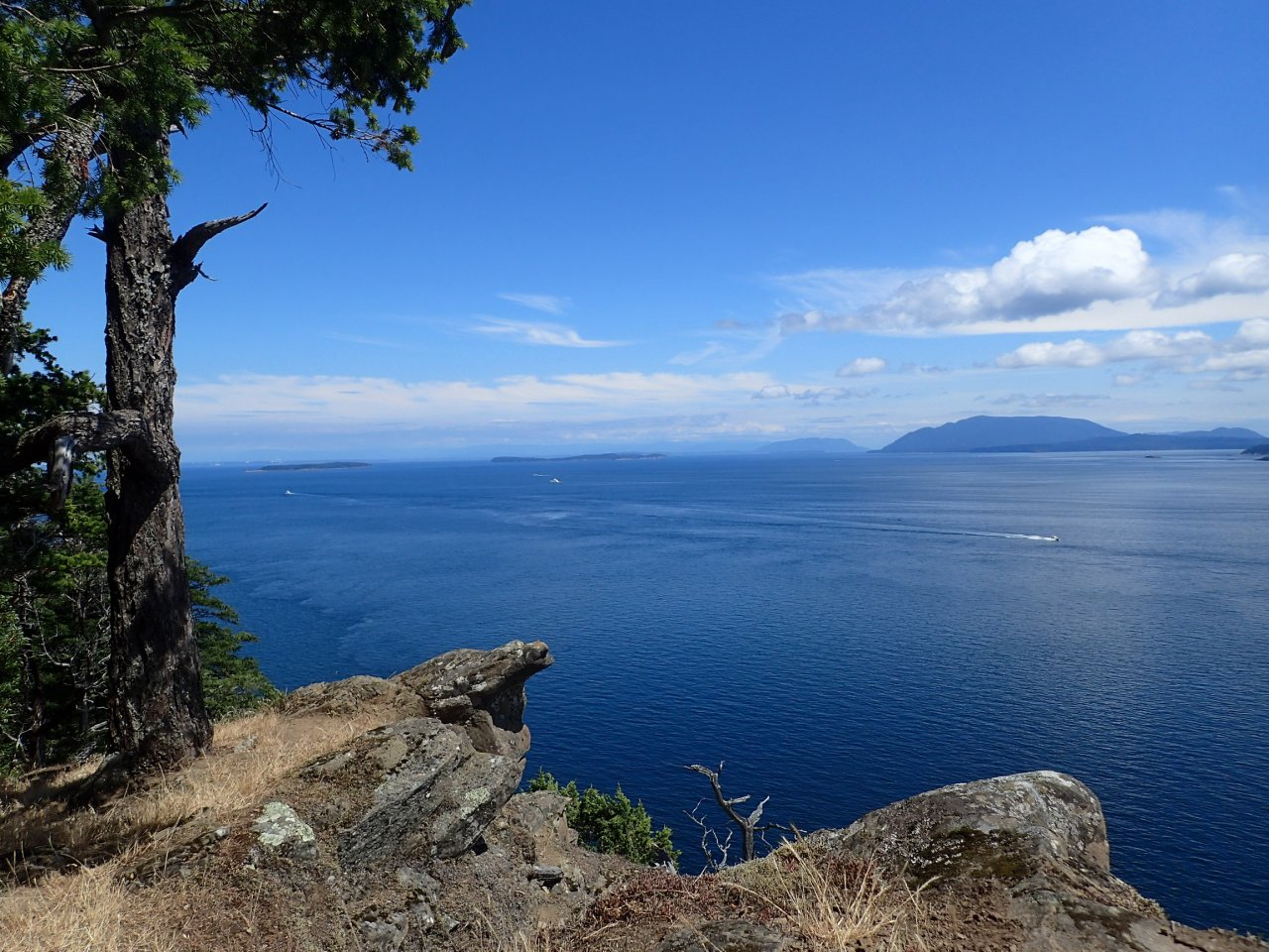 View from Monarch Head.jpg