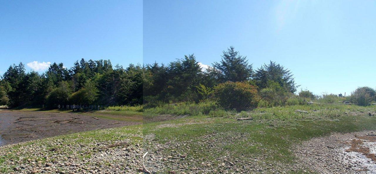 WilsonCk-land1.jpg